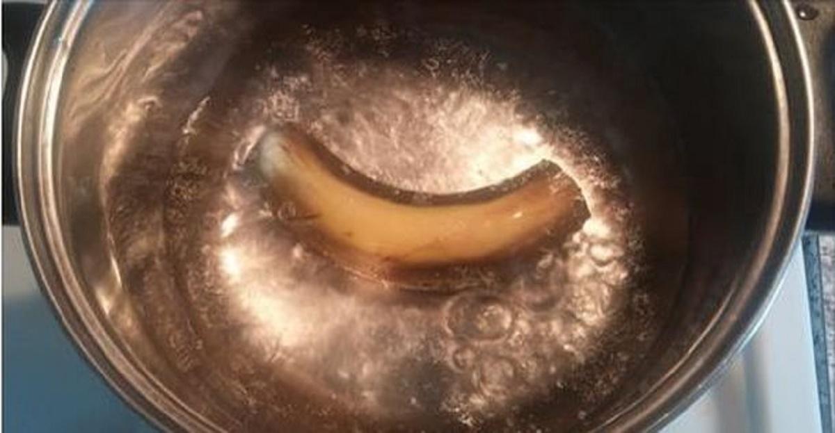 banan1a